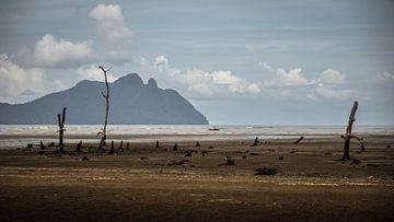 Totes Meer von Marco Vet
