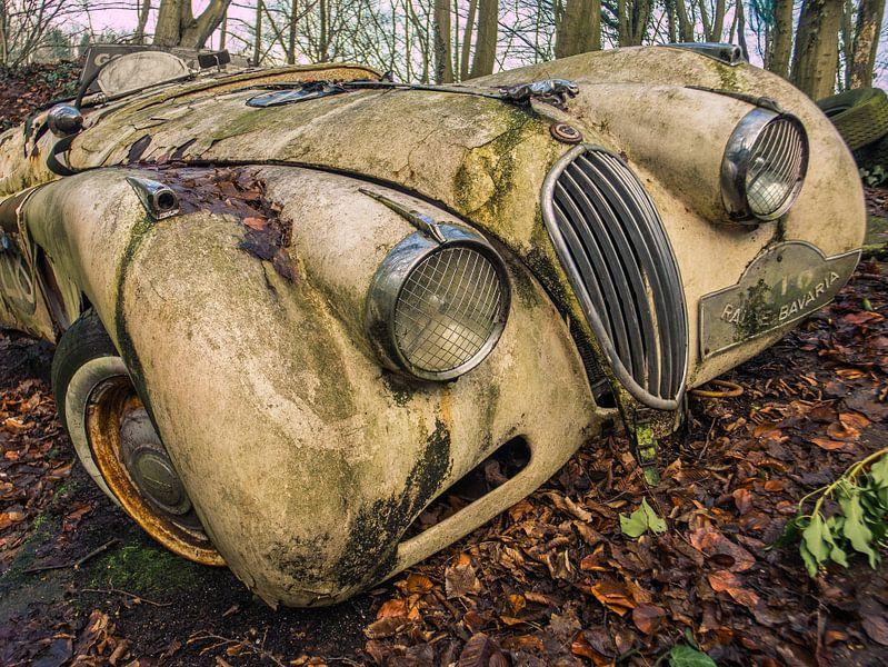 Jaguar XK Oldtimer dans la forêt sur Art By Dominic
