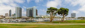 SAN DIEGO Skyline | Embarcadero Marina Park North sur Melanie Viola