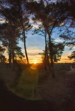 Sonnenaufgang über der Mookerheide von Jurjen Jan Snikkenburg