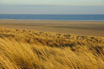 Duinen en Zee von Michel van Kooten