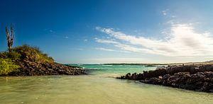 Zeezicht van de Galapagos