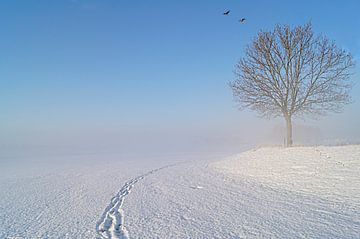 sneeuwlandschap van marjolein Parijs