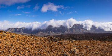 Nationalpark Teneriffa von Walter G. Allgöwer