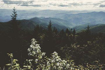 Smoky Mountain National Park Landschaft, Nature Magick  von PI Creative Art