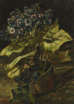 Cineraria's, Vincent van Gogh van Meesterlijcke Meesters
