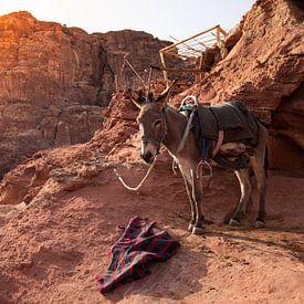 Zonsondergang Petra Jordanië van Merijn Geurts