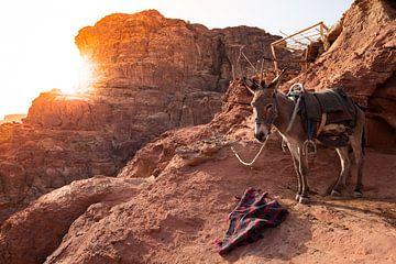 Sonnenuntergang Petra Jordanien von Merijn Geurts