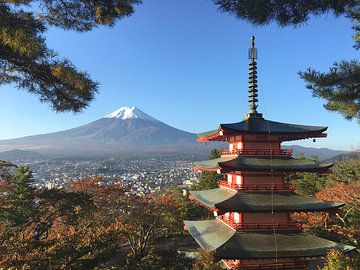 Heilige berg Fuji San van Menno Boermans