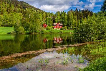Lente in Noorwegen van Hamperium Photography