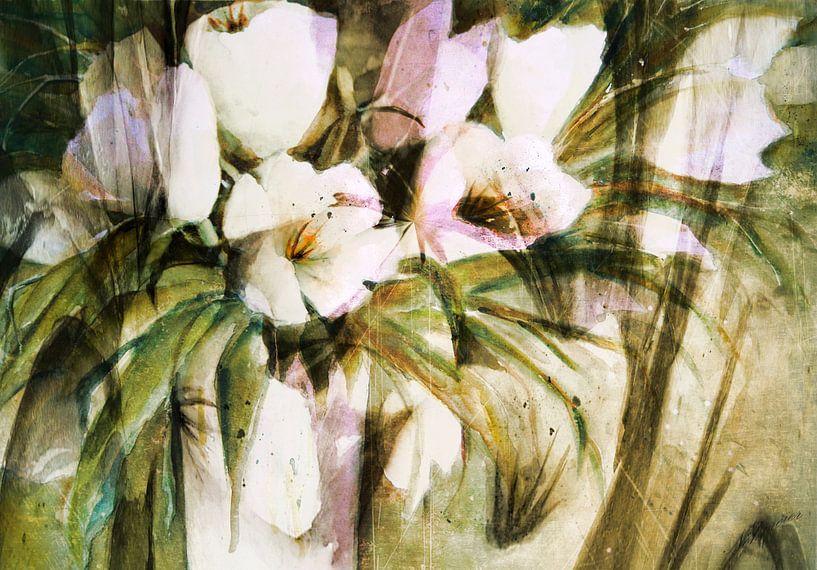 Tulipes blanches - résumé sur Christine Nöhmeier
