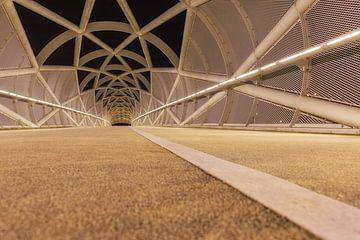 Das Netkous (Portlandbrücke) Rotterdam von Bob Vandenberg