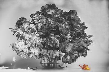 Tulips van Roland de Zeeuw fotografie