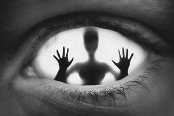 Eine gefangene Seele. von Elianne van Turennout
