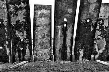 the wall van Ann Beckers