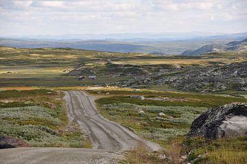 Uitzicht roadtrip Noorwegen van Tjeerd Langstraat