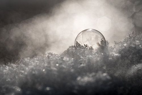 Bevroren zeepbel in de sneeuw van