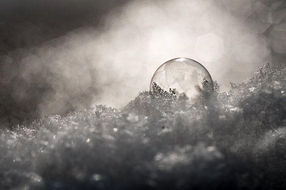 Bevroren zeepbel in de sneeuw van Milou Oomens