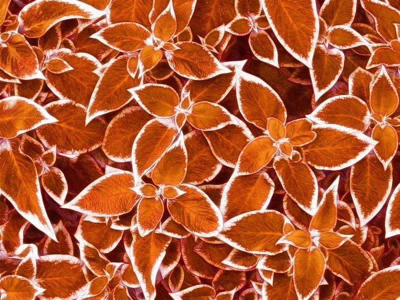 Golden Leaves (Gouden Bladeren) van Caroline Lichthart