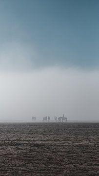 Paardrijden in de mist van Pim Haring