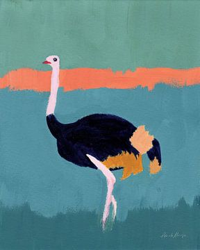 Struisvogel, Pamela Munger van Wild Apple