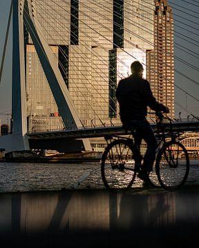 Der Radfahrer von Maarten Hooijmeijer