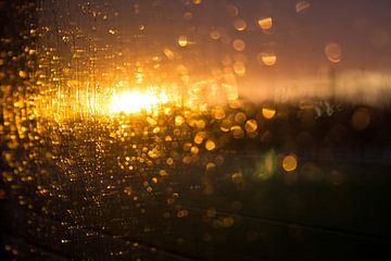Zonsondergang in de stad van Marlin van der Veen
