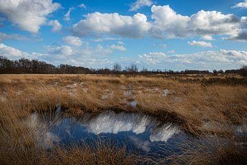 Reflection III van Johan Mooibroek