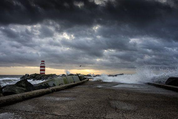 Waves van Rene van Rijswijk