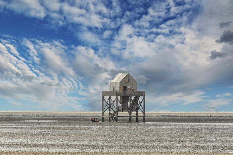 De Waddenzee bij eb met het onderzoeksgebouw. van Brian Morgan