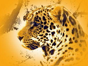 Jaguar 567 thula-art von Barbara Fraatz