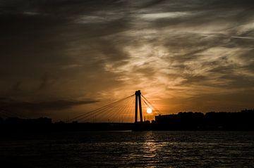 Rotterdam Willemsbrug zonsopgang  von Oguzhan Beyaztas