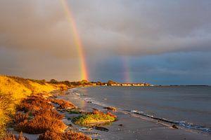 Ostseeküste bei Klintholm Havn in Dänemark.