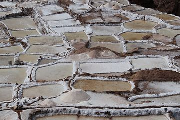 Peru, Salinas de Maras, zoutgewinning van Patsy Van den Broeck