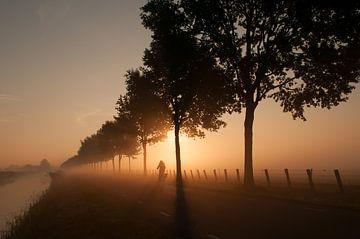 Mistige zonsopomst van Nancy van Verseveld