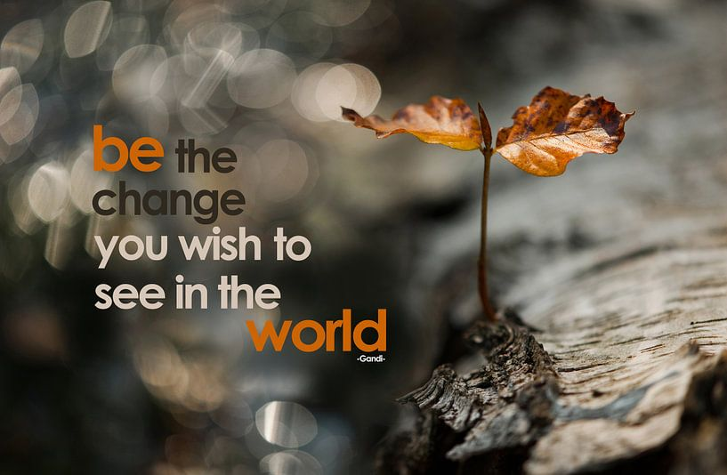 Quote: Be the change you wish to see in the world van Andrea Gulickx
