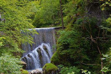 Wasserfall in Dornbirn Österreich. von Mavin Taschik