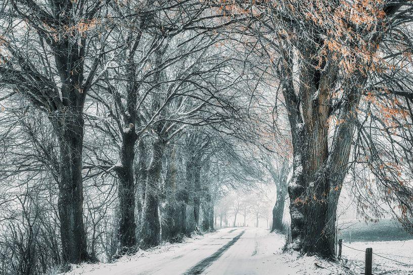 Wintermärchen von Rik Verslype