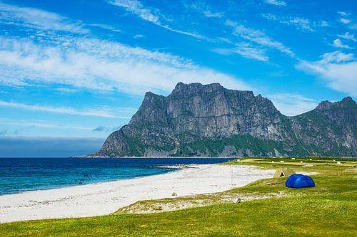 Beach on the Lofoten Islands in Norway van Rico Ködder