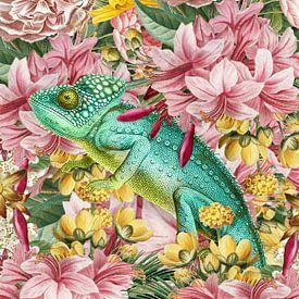 The Chameleon van Marja van den Hurk