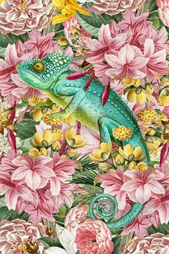 The Chameleon von Marja van den Hurk