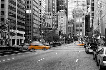 Manhattan, New York van Rob van Esch