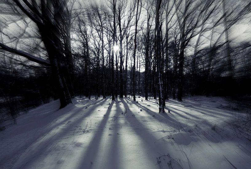 White light van Jenny de Groot