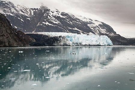 Margaret Glacier,Glacier Bay Alaska von Arie Storm