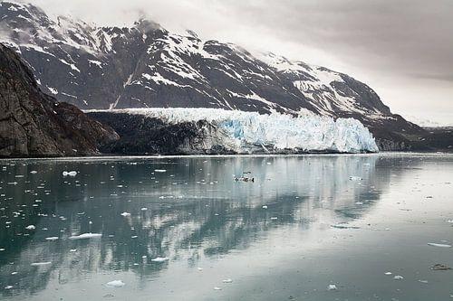 Margaret Glacier,Glacier Bay Alaska