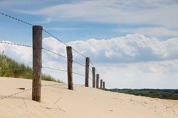 In de Nederlandse duinen van Jeffrey Van Zandbeek