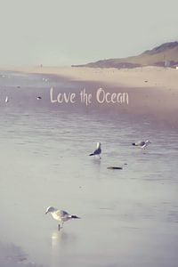 LOVE the OCEAN III