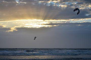 Kitesurfen bij zonsondergang van Martin Jansen