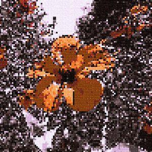 Flower. Cross Stitch.