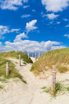 Chemin à travers les dunes sur Werner Dieterich